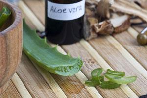 Aloe-Vera-hilft-bei-unreine